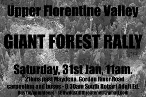 Giant-forest-rally